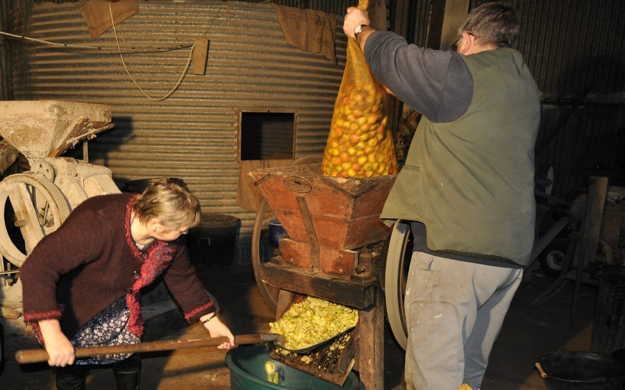 Fabrication artisanale du cidre